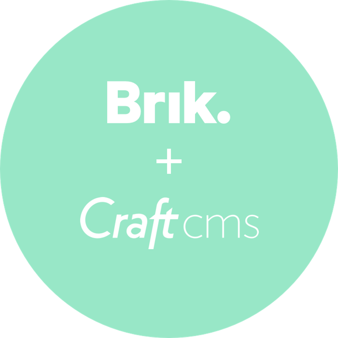 Brik Craft Cms